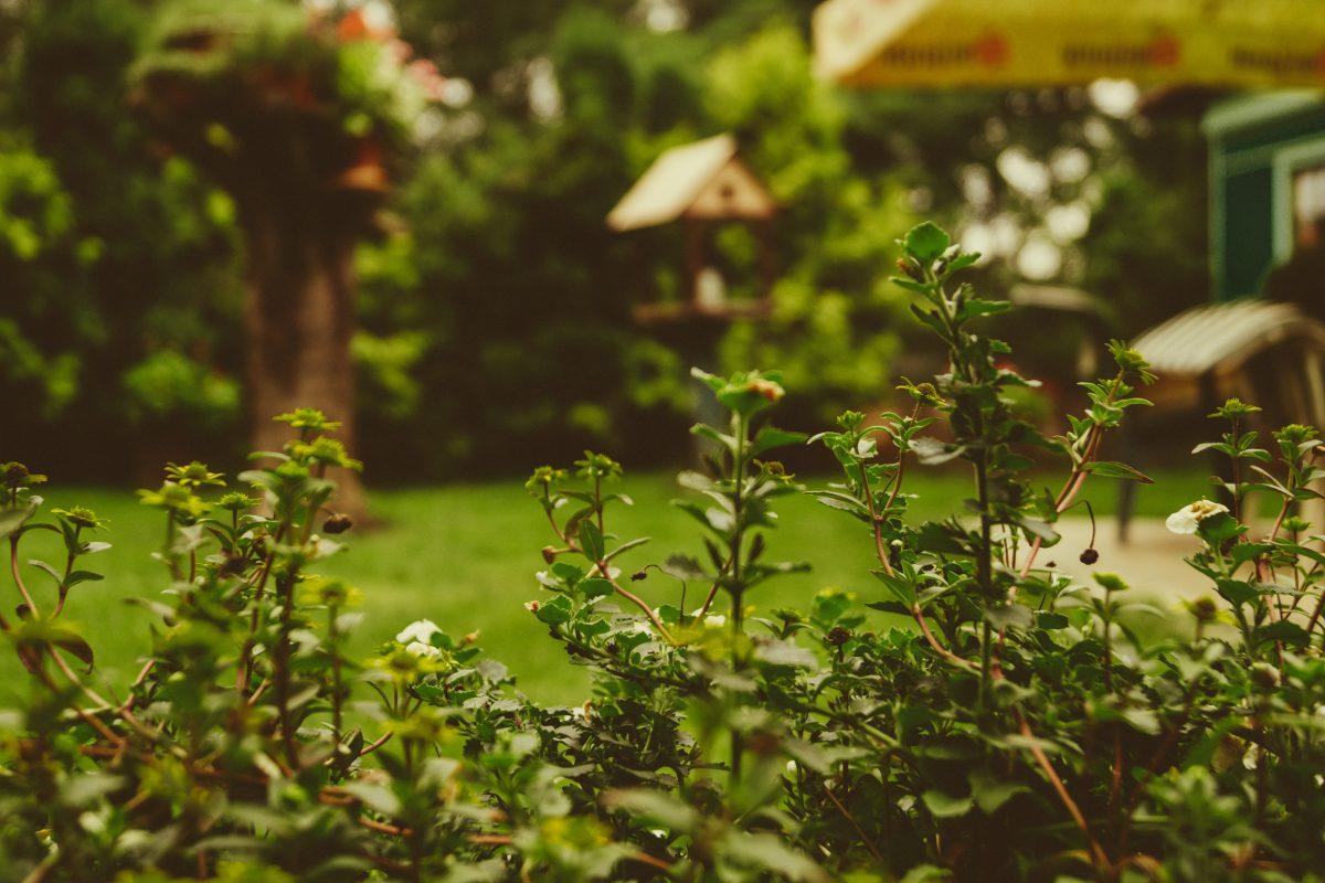 Feng Shui Im Garten Auf Balkon Und Terrasse Wohnen Und Einrichten